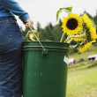 Woman carrying bucket of sunflowers on farm — Stock Photo