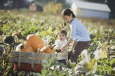 Asian sisters pulling wagon through pumpkin patch — Stock Photo