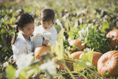 Asian sisters in pumpkin patch — Stock Photo