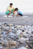 Hispanic father and son looking in tide pool at beach — Stock Photo