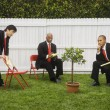 Multi-ethnic businessmen looking at tree — Stock Photo