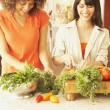 Female friends chopping vegetables — Stock Photo