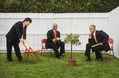 Multi-ethnic businessmen looking at tree — Stock Photo