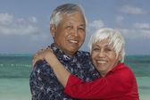 Senior Asian couple hugging — Stock Photo
