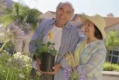 Senior Hispanic couple gardening — Stock Photo