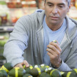 Hispanic man shopping for produce — Stock Photo