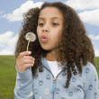 Mixed Race girl blowing on dandelion — Stock Photo