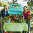 Hispanic women at organic farm stand — Stock Photo #23317680