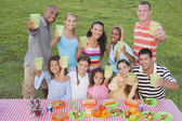 Multi-ethnic friends toasting at picnic table — Stock Photo