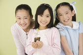 Asian sisters with new plant — Stock Photo