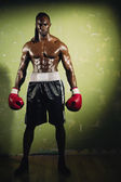 Portrait of African male boxer — Stock Photo