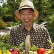 Senior Asian man holding basket of vegetables — Stock Photo
