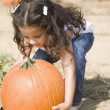 Hispanic girl picking up pumpkin — Stock Photo