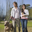 Couple walking dog in park — Stock Photo