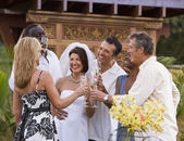 Multi-ethnic friends toasting newlyweds — Stock Photo