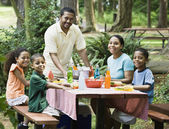 Multi-ethnic family eating at picnic table — Stock fotografie