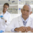 African scientist in laboratory with co-worker in background — Foto de Stock