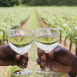 African couple toasting wineglasses near vineyard — Stock Photo