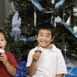 Korean siblings holding cupcakes next to Christmas tree — Stok fotoğraf