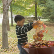 African boy putting autumn leaves in wheelbarrow — Stock Photo