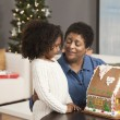 Grandmother and granddaughter looking at gingerbread house — Foto Stock #23332972
