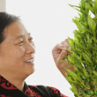 Chinese woman tending plant — Stock Photo