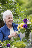 Senior woman smiling and arranging flowers in vase — Stock Photo