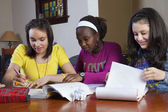 Teenage girls doing homework — Stock Photo