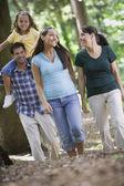 Hispanic family walking in woods — Stock Photo