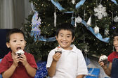 Korean siblings holding cupcakes next to Christmas tree — Stock Photo