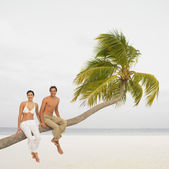 Couple sitting on palm tree at beach — Stock Photo