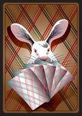 Rabbit_gambler — Stock Vector