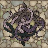 The snaky knot on the stones dark — Vecteur