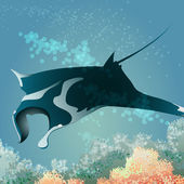 Flying manta ray — Stock Photo
