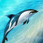 The jumping dolphin — Stock Photo