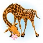 Giraffe in love — Stock Vector