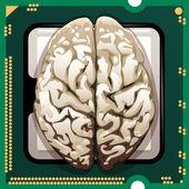 Brains inside — Stock Vector