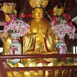 Sacred Buddha — Stock Photo #16182065