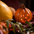 Autumn still life with pumpkin — Stock Photo