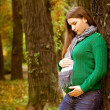 Stock Photo: Beautiful pregnant womrelaxing in park