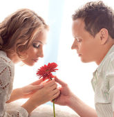 Mature couple of lovers. Man presents flower — Stock Photo