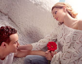 Mature couple of lovers. Man presents flower — Stok fotoğraf