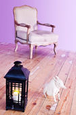 Torch, chair and dog — Stock Photo