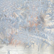 Frosty natural pattern on winter window — 图库照片