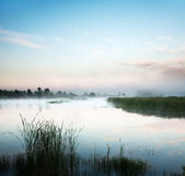Landscape with lake and a morning fog — Stock Photo