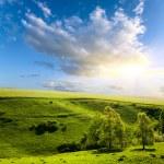 Красивый пейзаж и пасмурное небо — Стоковое фото