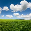 Beautiful landscape and cloudy sky — Stock Photo