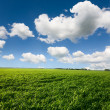 Beautiful landscape and cloudy sky — Stockfoto