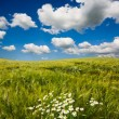 Stok fotoğraf: Beautiful landscape and cloudy sky