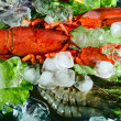 Shrimps and lobster with an ice — Stock Photo #13341249